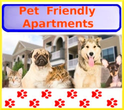 Pet-Friendly-apartments